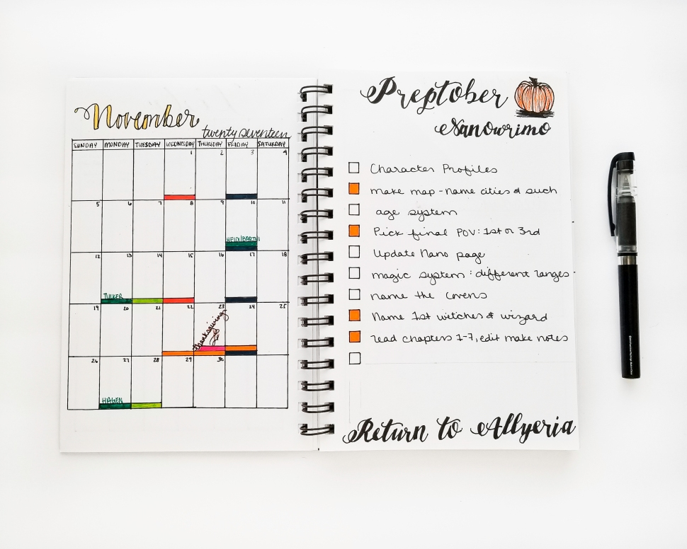 Nanowrimo bullet journal